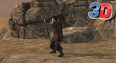 Play Robin Hood 3D